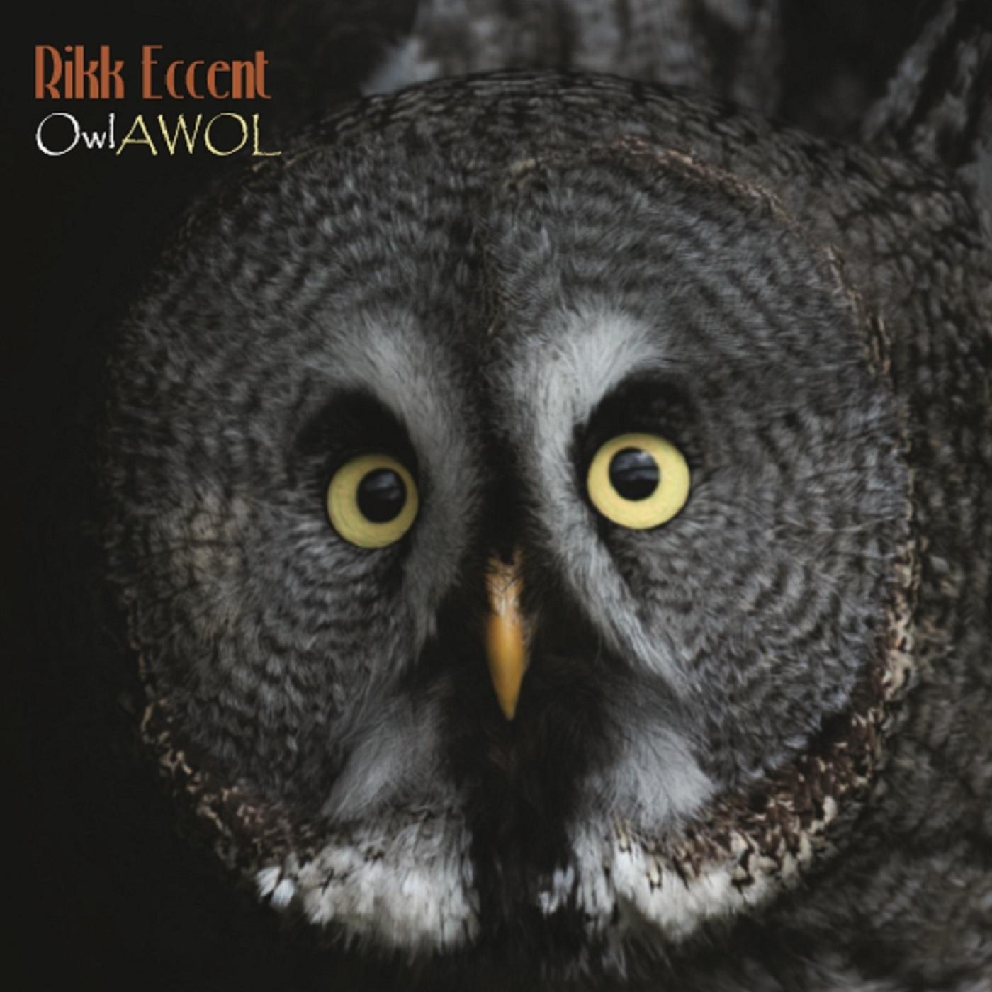 Rikk Eccent: OwlAWOL!
